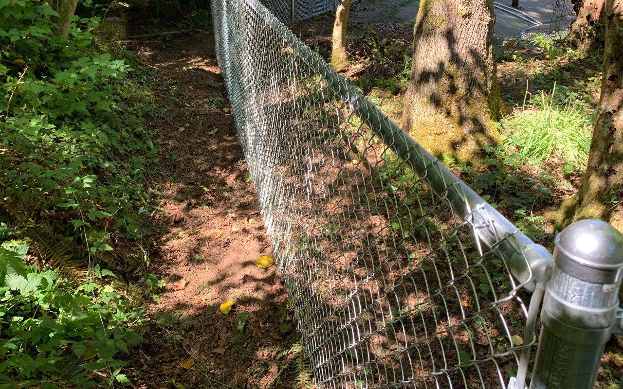 steel-chainlink-fence2