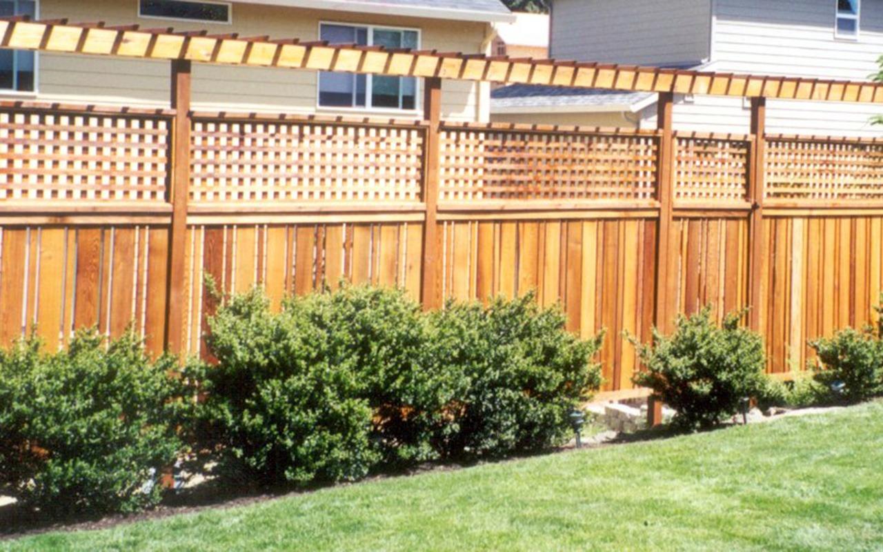 trellis-fence9